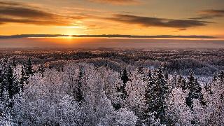 Karulan kansallispuisto (Viro)