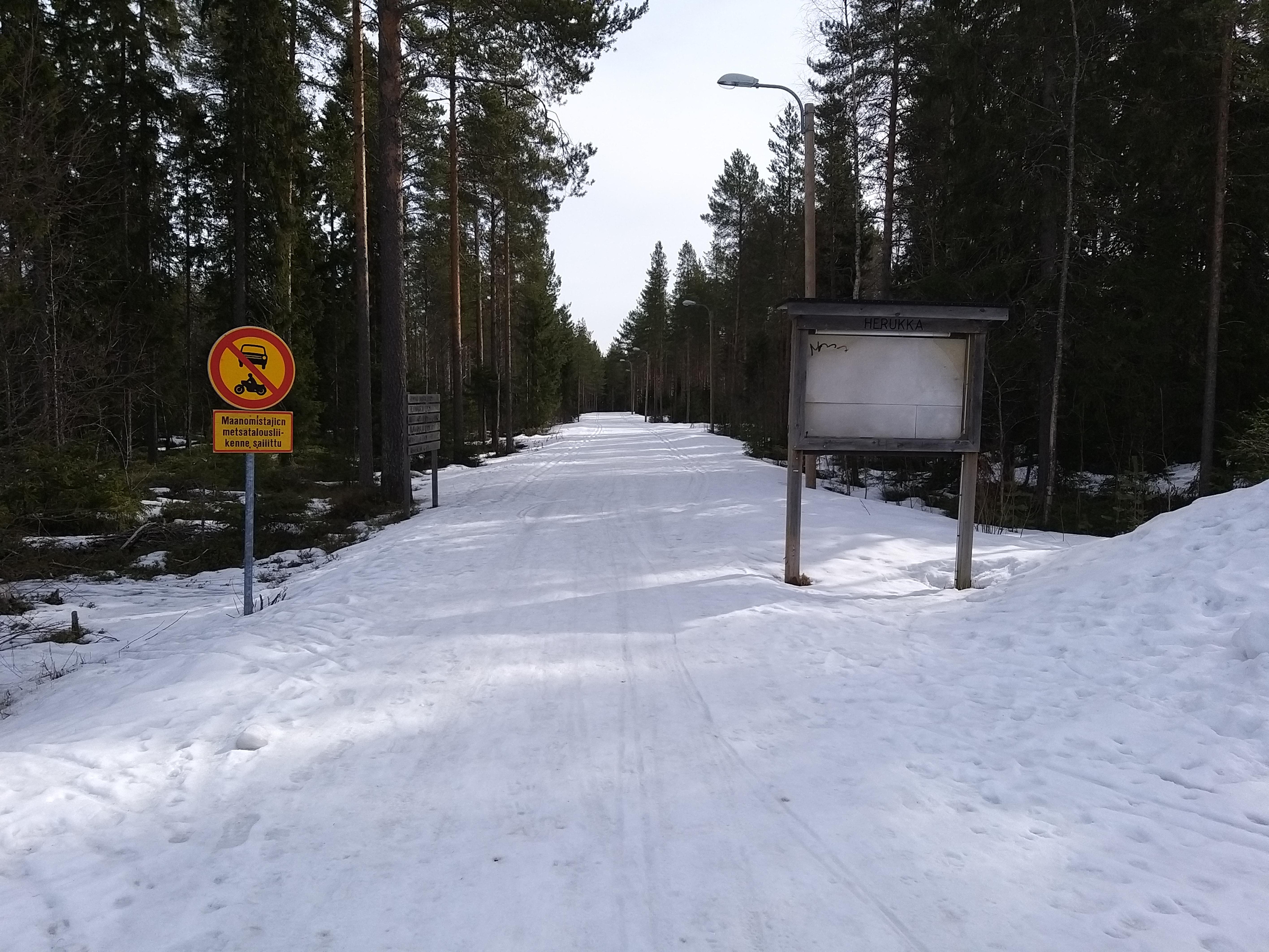 Herukka-Ahvenoja -kuntoradan Herukan-pää. Rata on lumen peitossa, ja sen molemmilla laidoilla kulkee hiihtolatu.