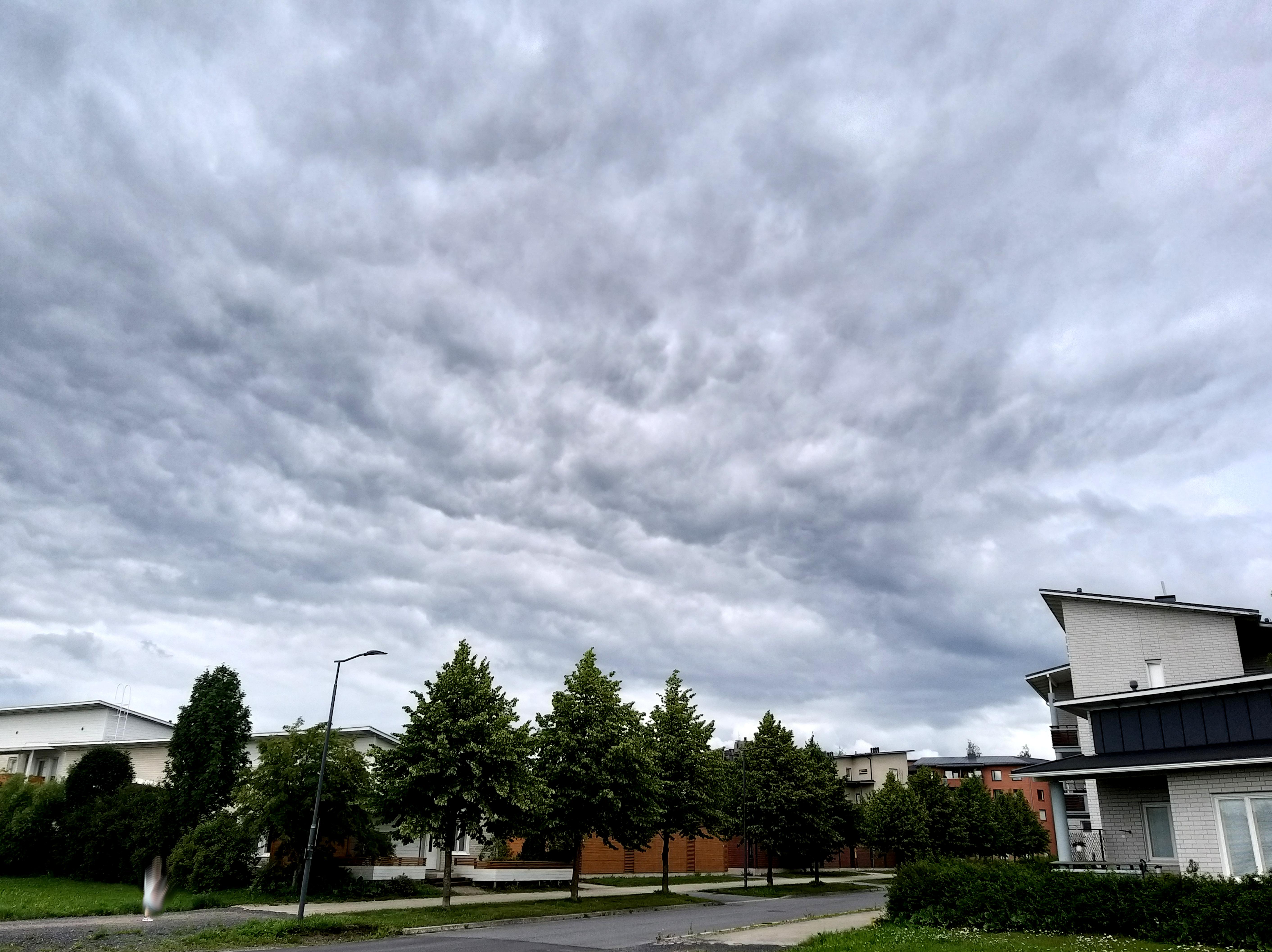 Tummia muhkurapilviä taivaan täydeltä. Alla katu, puita, taloja.